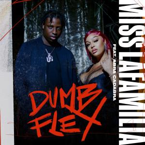 Album Dumb Flex(Explicit) from Abra Cadabra