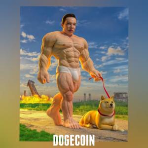 Album Dogecoin from BenKeys Music