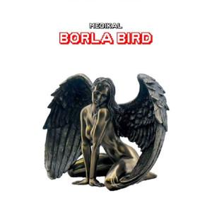 Borla Bird