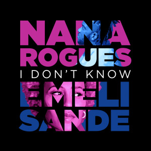 Album I Don't Know from Nana Rogues