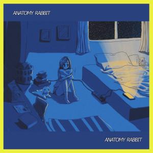 อัลบัม Wonder Why Lonely ศิลปิน ANATOMY RABBIT