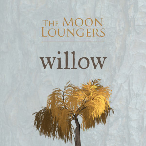 Willow (Acoustic Cover) dari The Moon Loungers