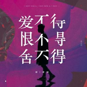 胡彥斌的專輯愛不得 恨不得 捨不得