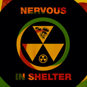 Album Nervous In Shelter from Timmy Regisford