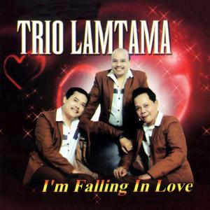 Im Falling In Love (Explicit)