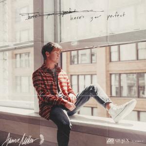 Here's Your Perfect dari Jamie Miller