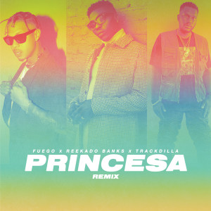 Album Princesa from Trackdilla