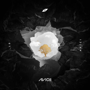 Listen to Lonely Together song with lyrics from Avicii