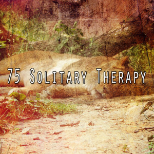 Album 75 Solitary Therapy from White Noise Babies