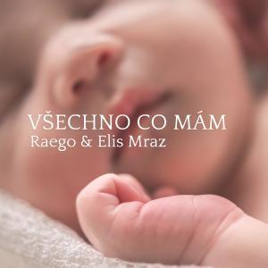 Album Všechno co mám from Raego