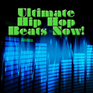 Album Ultimate Hip Hop Beats Now! from Hip Hop DJ Masters