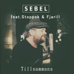 Album Tillsammans from Stoppok