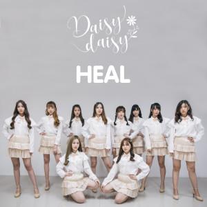 Album Heal from Daisy Daisy