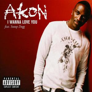 Akon的專輯I Wanna Love You