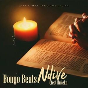 Album Ndive from Bongo Beats