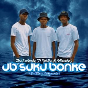 Album Ub'suku Bonke from Mellow