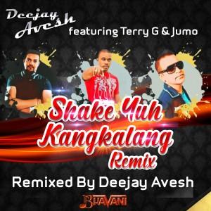 Album Shake Yuh Kangkalang (Remix) from Terry G