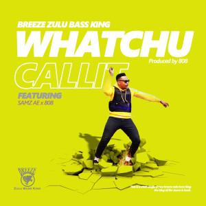 Album King Of The Dance Mixtape from Breeze Zulu Bass King