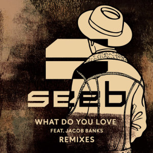Listen to What Do You Love (SWIING Remix) song with lyrics from Seeb