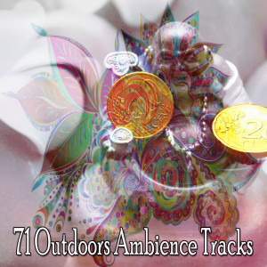 Album 71 Outdoors Ambience Tracks from Massage Therapy Music