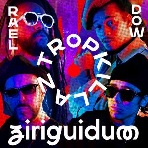 Album Ziriguidum from Tropkillaz