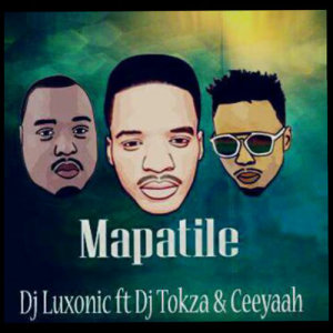 Album Mapatile from DJ Luxonic