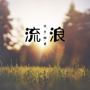 浪子强涛的專輯流浪