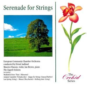 Serenade For Strings