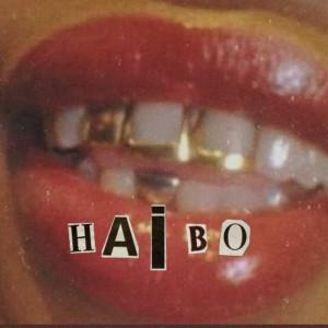 Album Haibo (Explicit) from Tshegokoke