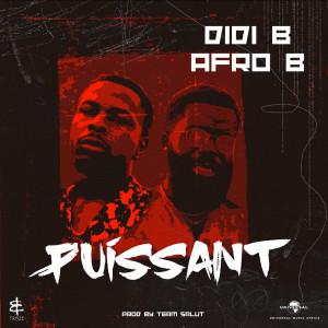 Album Puissant from Didi B