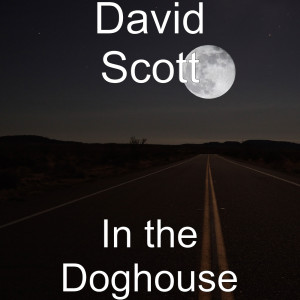 Album In the Doghouse from DAVID SCOTT