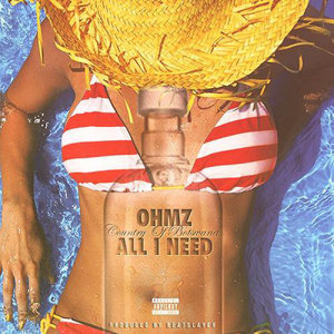 Album All I Need Single from OHMZ