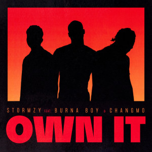 Listen to Own It (feat. Burna Boy & CHANGMO) song with lyrics from Stormzy