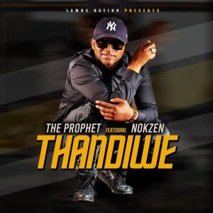 Album Thandiwe from Nokzen
