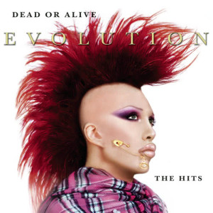 Album Evolution: The Hits from Dead Or Alive