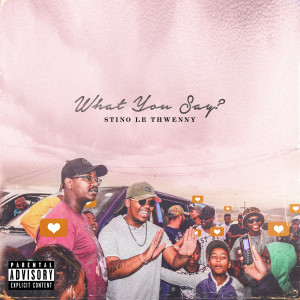 Album What You Say? from Stino Le Thwenny
