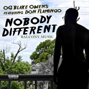 Album Nobody Different (feat. Don Flamingo) from Don Flamingo