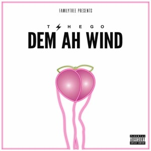 Listen to Dem Ah Wind song with lyrics from Tshego