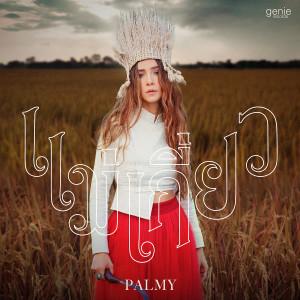 อัลบัม แม่เกี่ยว - Single ศิลปิน Palmy