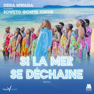 Album Si la mer se déchaîne from Dena Mwana
