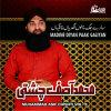 Muhammad Asif Chishti Album Madine Diyan Paak Galiyan, Vol. 8 - Islamic Naats Mp3 Download