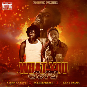 Album What You Say (Explicit) from Stunnaman02