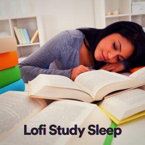 Album Lofi Study Sleep from Chill Hip-Hop Beats