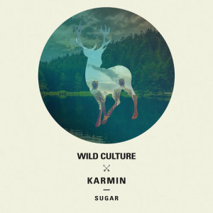 Listen to Sugar (Wild Culture vs. Karmin) [Extended Mix] (Extended Mix) song with lyrics from Wild Culture