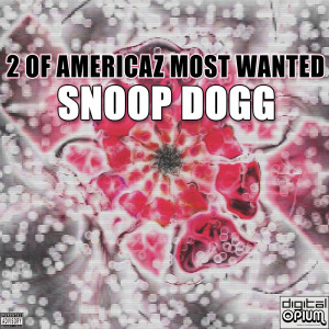 Album 2 Of Americaz Most Wanted from Snoop Dogg