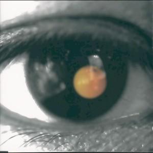 Black Tangerine 2014 David Tao
