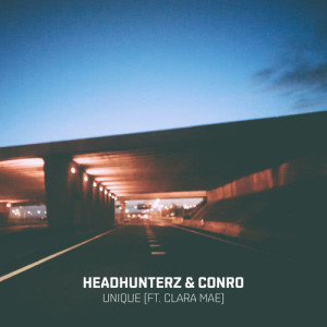 Album Unique from Headhunterz