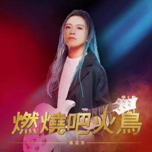 Album Ran Shao Ba Huo Diao from 张芸京