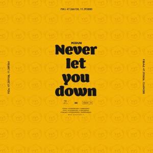 Album Never Let You Down from Medun
