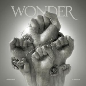 Album Wonder from Akwasi